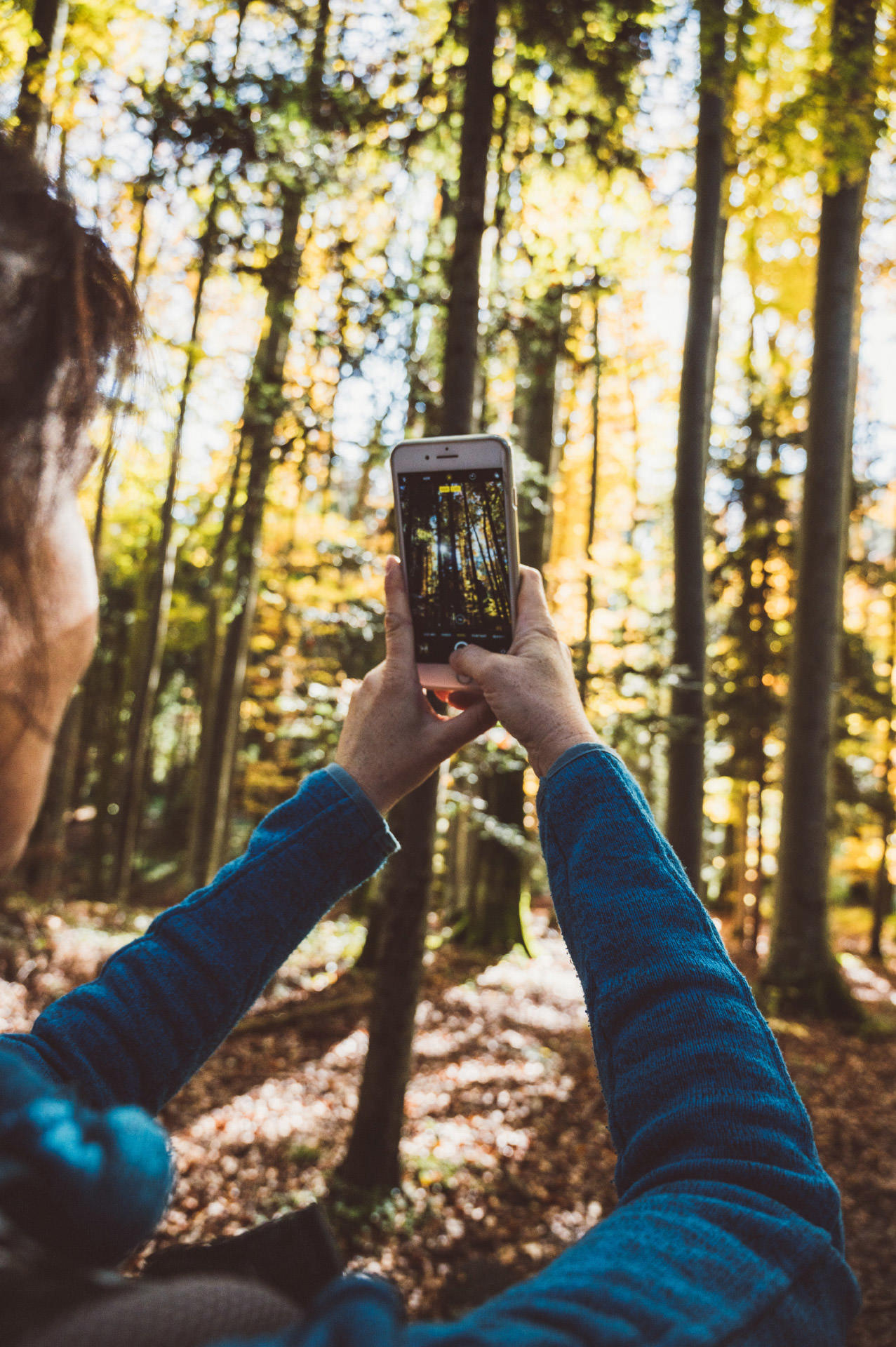 Fototipps im Herbst